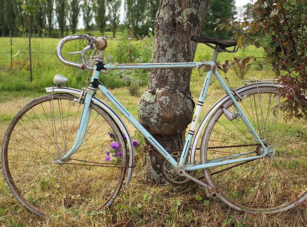 site - bike project